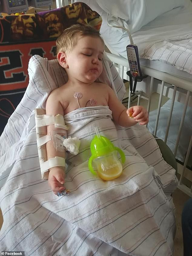 Un baietel de 2 ani a stat in coma o saptamana dupa ce a fost muscat de o capusa | Demamici.ro