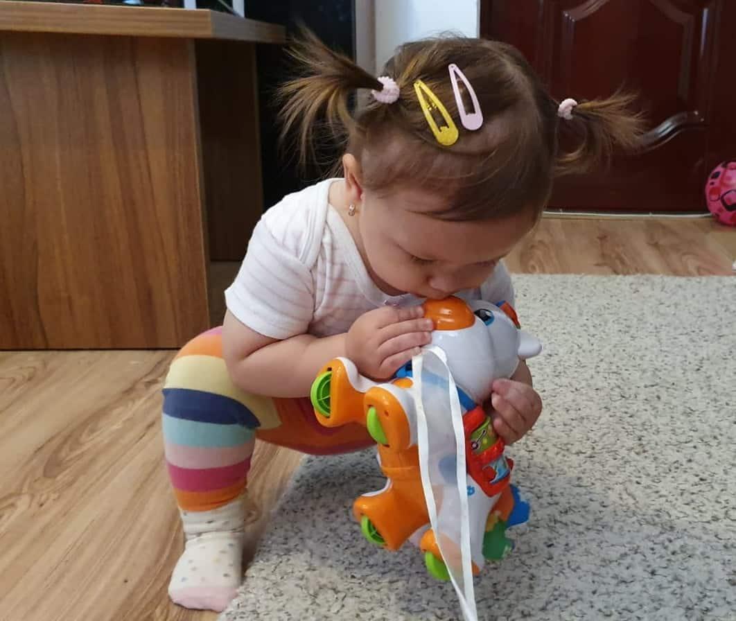 Dezvoltarea copilului prin joaca - clemmy, sortator, ponei interactiv - review-uri AraToys