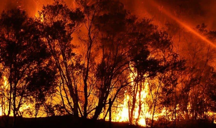 Baietel de 19 luni, decorat la inmormantarea tatalui. Pompierul a murit in incendiile din Australia   Demamici.ro
